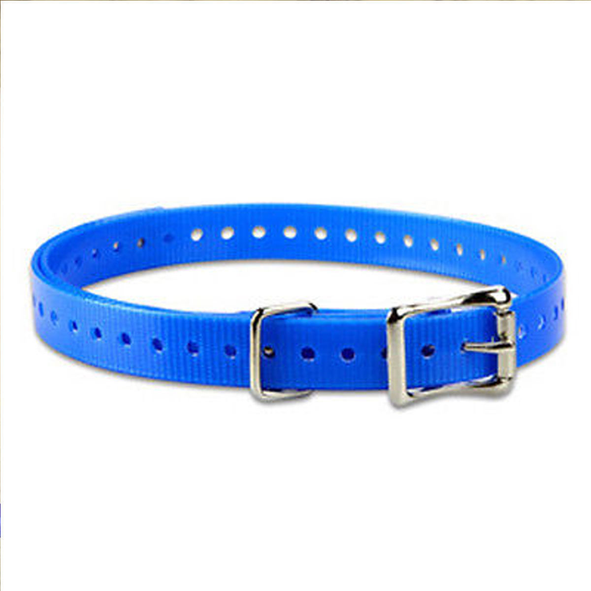 "SPORT DOG REPLACEMENT 1"" COLLAR STRAP black or blue"