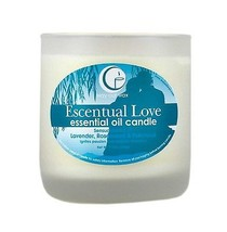 Vermont Way Out Wax Candle~Escentual Love~Frost... - $18.76