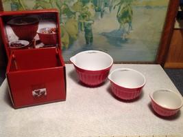 NEW Gourmet Village Measuring Bowl Set