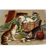 Cats Kittens playing with yarn and sewing basket 1898 reproduction 8 x 10 - $7.50