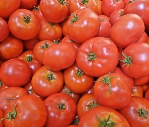 SHIPPED From US,PREMIUM SEED: 50 Particles of Heirloom Tomato Seed,Hand-Packaged