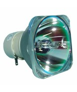 SmartBoard 1025290 Philips Projector Bare Lamp - $70.99