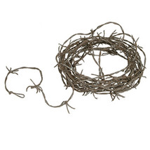Halloween Rusty Barbed Wire Garland - 12' - $71.88