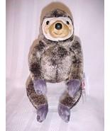 Ty Beanie Babies - Slowpoke the Sloth - $4.89