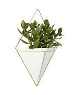 Umbra Trigg Wall Vessel Brass – Large Planter - $79.04 CAD