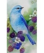 Bluebird Magnet #4 - $7.99