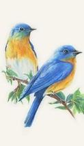 Bluebird Magnet #6 - $7.99