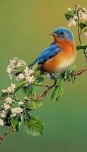 Bluebird Magnet #3 - $7.99