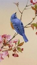 Bluebird Magnet #2 - $7.99