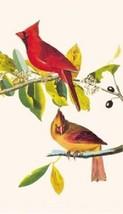Cardinal Magnet #1 - $7.99