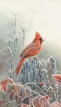 Cardinal Magnet #2 - $7.99