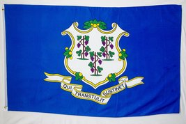 State of Connecticut Flag 3' X 5' Indoor Outdoor State Banner - $9.95