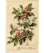 Best Christmas Wishes  Winsch post card - $6.00