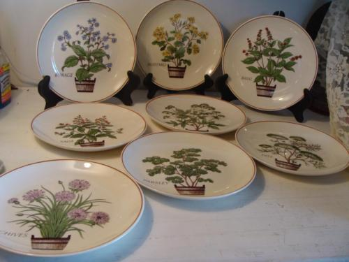 Vintage Set 8 Nelson Lebo Herb Plates Basil Mustard Sage Lovage Dill Chives Plus