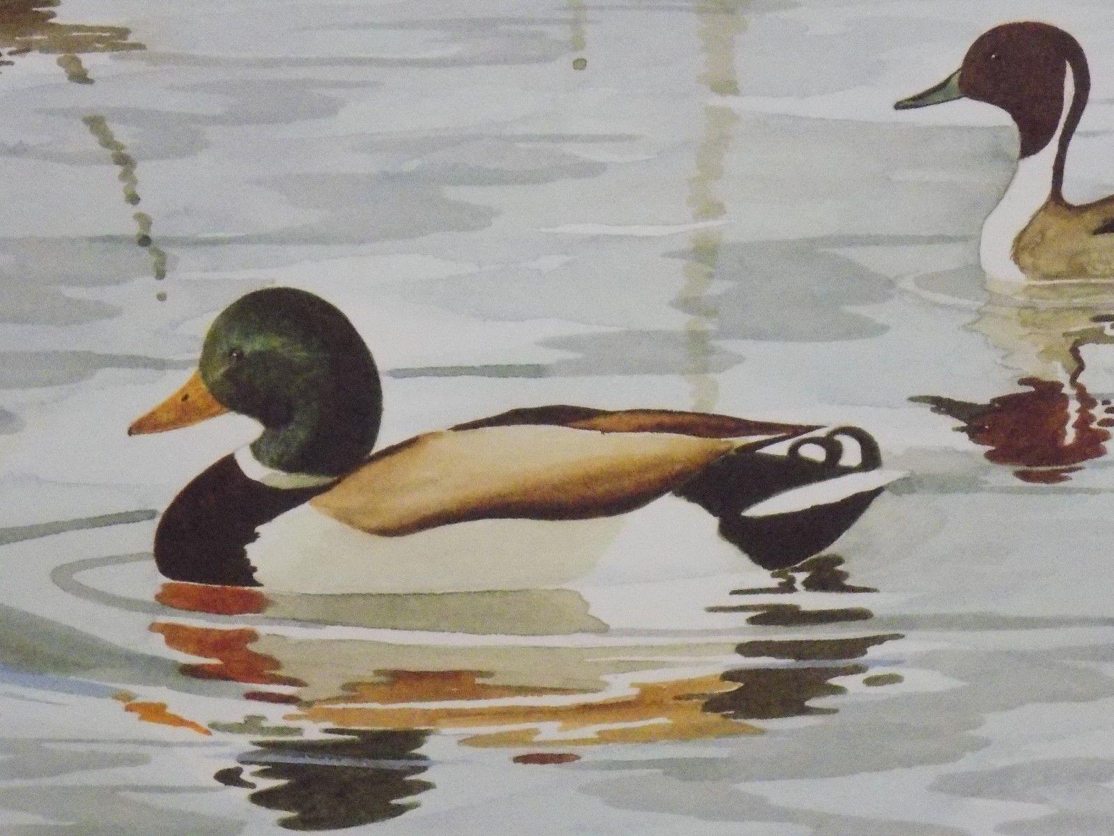 Vintage 1986 Signed ROBERT HILTY ARTIST PROOF #3 Ducks on Water Art Print