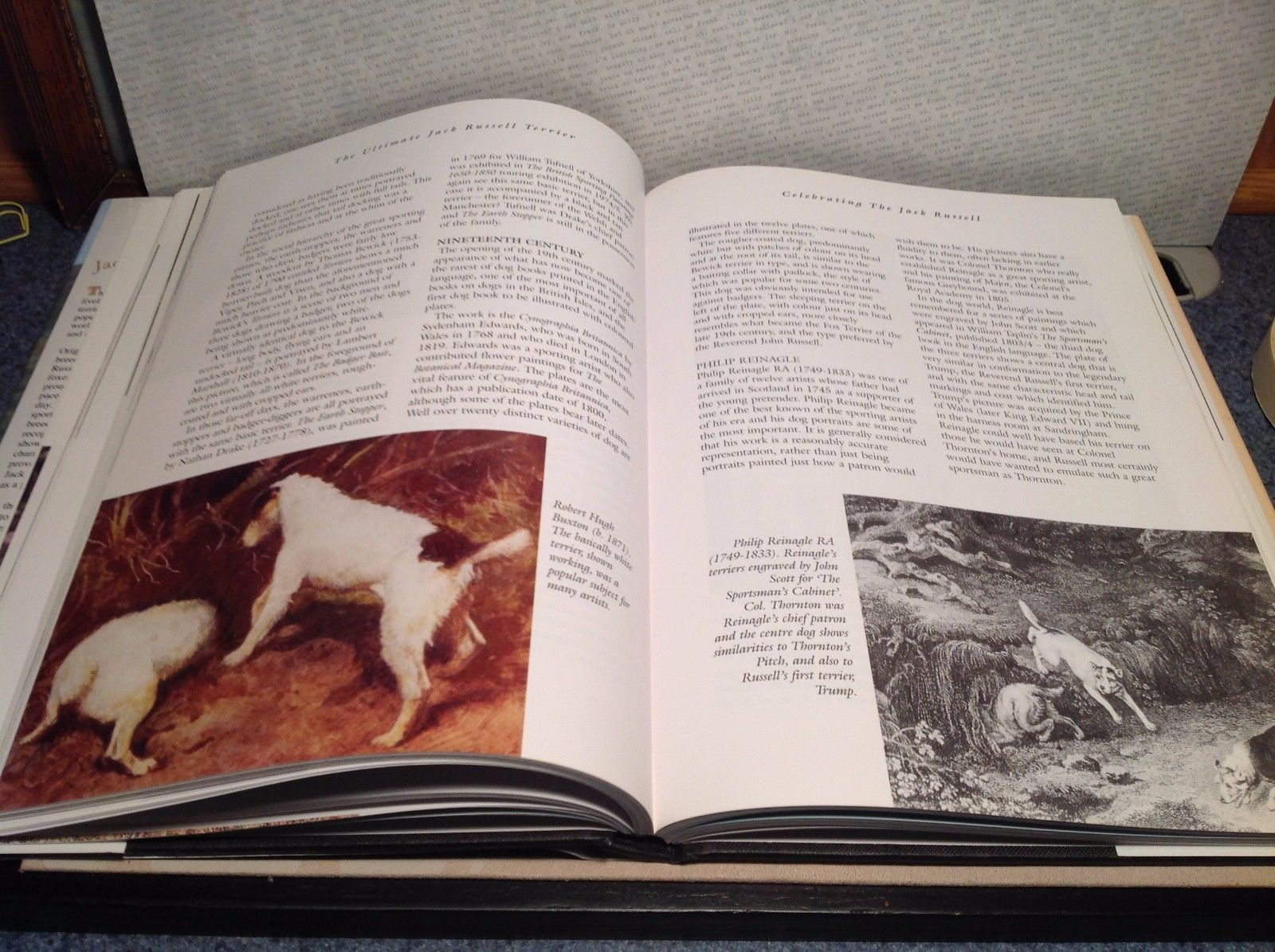 The Ultimate Jack Russel Terrier Book by Mary Strom