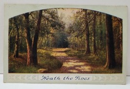 'Neath The Pines Woods Nature Path View Scenic Postcard B12 - $4.95