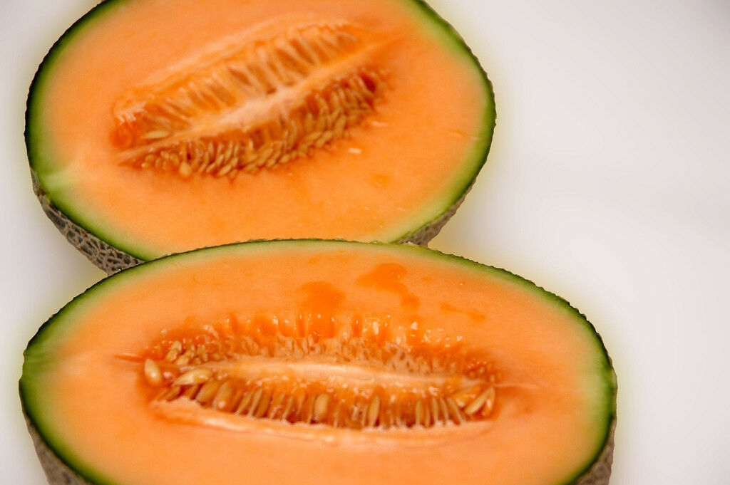 Primary image for SHIPPED FROM US 20 Iroquois Melon Cantaloupe Edible Fruit Seeds, GS04