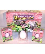 2  HATCHING GROWING LIZARD  GROWING PET HATCH ' EM EGG - $6.92