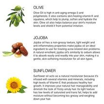 Provence Beauty Beard Oil - All Natural Fragrance Free Olive, Sunflower & Jojoba image 4
