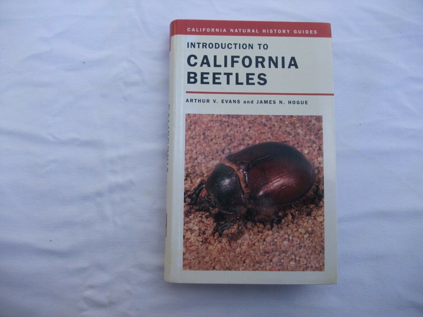 Primary image for INTRODUCTION TO CALIFORNIA BEETLES (CALIFORNIA NATURAL HISTORY GUIDE LIKE NEW