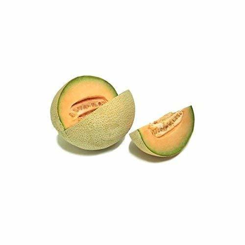 Bulk Organic Honey Rock Melon Seeds NON GMO (50 Lbs) - $1,164.19