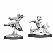 WizKids D&D Nolzurs Marvelous Upainted Miniatures: Wave 11: Female Human Monk - $8.99
