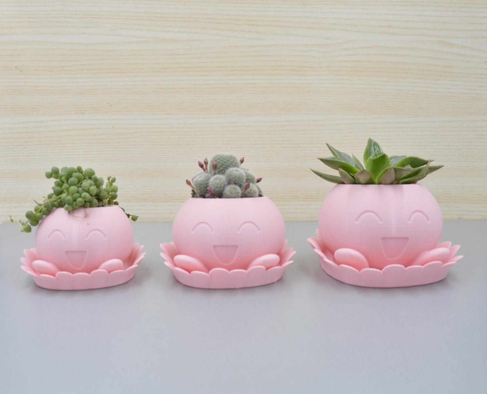 Oddish Planter/planter with saucer/3D planter/Aqua air plant/Pokemon planter/Pin