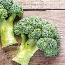 1,500 Seeds De Cicco Broccoli Seeds TkSmartbuy - $26.73