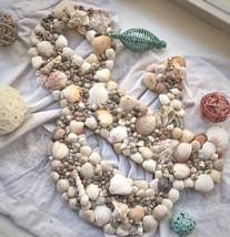 Large Seashell Symbol - $30.00