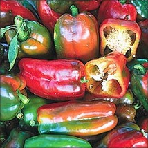 Organic Napoleon Pepper Seed - Heirloom Early Sweet Peppers Seeds (0.1g ... - $5.34+