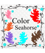 Color Seahorse 1-Digital Clipart-Gift Cards-Gift Tag-Jewelry-T shirt-Scr... - $3.99