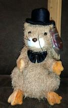 TY Beanie Baby - PUNXSUTAWNEY PHIL 2004 the Groundhog 2003 MWMT - $9.99