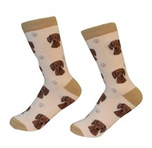 Dachshund Red Socks Unisex Dog Cotton/Poly One size fits most - $11.99