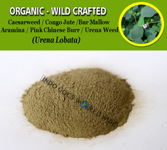 POWDER Caesarweed Congo Jute Bur Mallow Aramina Pink Chinese Burr Urena ... - $16.40+