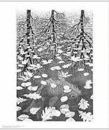 M.C. Escher Three Worlds Cool Wall Decor Art Print Poster 11x14 - $28.00