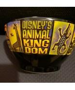 DISNEY WORLD animal kingdom bowl collectable rare - $14.85