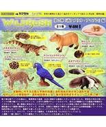 Capsule Q Museum WILD RUSH II Amazon [all 5 sets (Full comp)] Capsule toy - $40.29