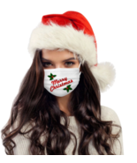Merry Christmas Face Mask Washable Reusable Replaceable Filter Element Mask - $13.28