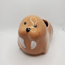 Walrus Animal Planter Grow Kit, ceramic pot with soil and mint herb seeds image 3