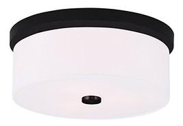 Livex Lighting 50863-07 Meridian 2-Light Ceiling Mount, Bronze - $130.04