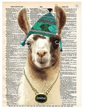 Art N Wordz Imma Llama Dictionary Page Pop Art Wall or Desk Art Print Po... - $21.00