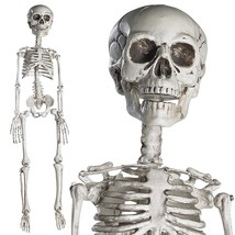 Halloween Skeleton Full Body Halloween Skeleton with Movable Joints  - $21.51