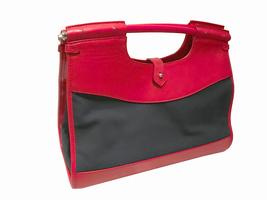 Ralph Lauren Collection - Red Leather Navy Canvas Handbag - $150.00