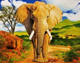 100 Piece Jigsaw Puzzle by Puzzlebug 9 in x 11 in - The African Elephant - $4.99