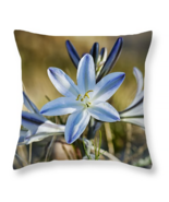Desert Lily, Throw Pillow, seat cushion, fine art, home decor, wildlflowers - $41.99+
