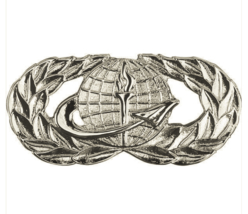Mid Size Genuine U.S. Air Force (Usaf) Breast Badge: Officer Force Support - $14.83