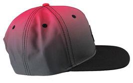 Staple World Renown Pigeon Brand Men's Chromatic Snapback Hat NWT image 4