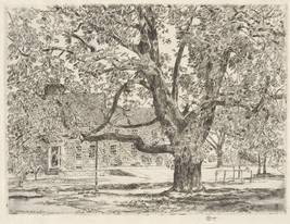 The Big Horse Chestnut Tree, Easthampton, 1928 - 24x32 inch Canvas Wall Art Home - $51.99