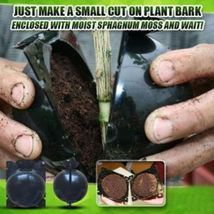 Plant Root growing box - $7.88+